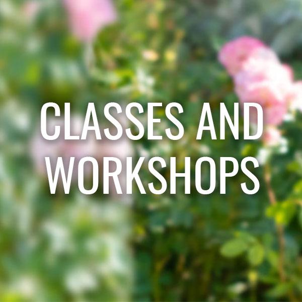 graphic-classes